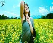 Bollywood + Hollywood Actress Hot SAREE Shape, Big Ass + Big from bollywood actress hot cleavage in saree